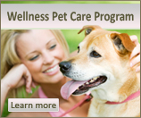 Wellness Pet Care Program